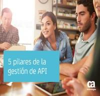 5 pilares de la gestión de API